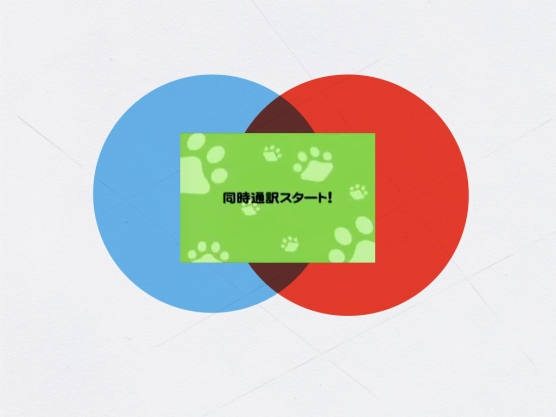 mpick-yokohama-2010.042