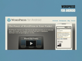 State of the Word 2010.058